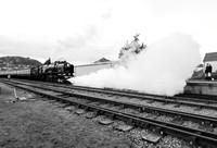 TRAIN EP8364A