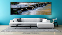 LANDSCAPE GALLERIES PG2020