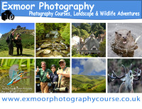 Exmoor Photography Course www.exmoorphotographycourse.co.uk